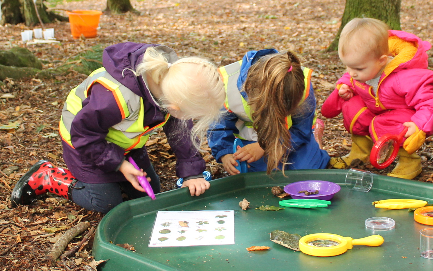 Children Learn Through Nature