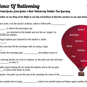 Gecko Hot air Balloon Quiz